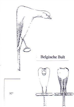 Belgisch Bult